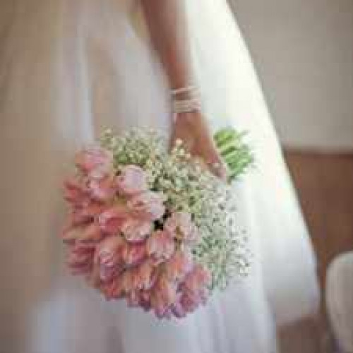 wedding-pink-blush