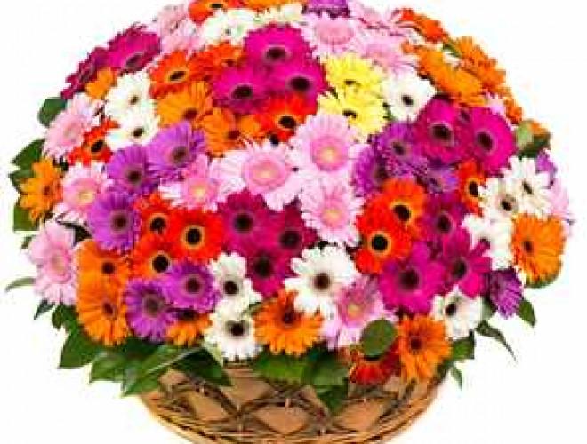 какие цветы подарить на годовщину знакомства